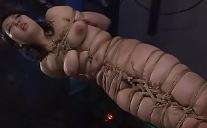 Asian cunt Ayaka Shintani bound in shibari increased by brutally whipped until she screams.WMV